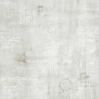 Delconca HFO5 HARD GRAFFITY GRAY 80x80, м2   (GTFO05GFR)-0